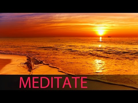 8 Hour Shamanic Meditation: Tibetan Music, Binaural Brainwaves, Healing Music, Chakra Cleanse  ☯334