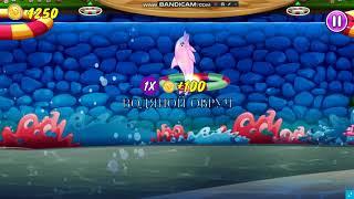Играем в игру Шоу Дельфинов 5 выпуск