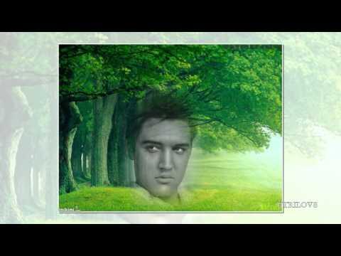Elvis Presley - Early Morning Rain View 1080 HD