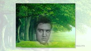 Download Elvis Presley - Early Morning Rain View 1080 HD MP3 song and Music Video