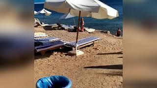Grand Oasis resort 4 Шарм Ель шейх