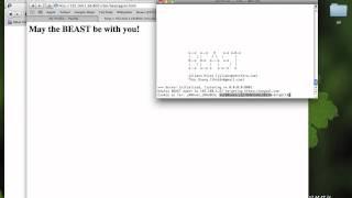 BEAST vs HTTPS