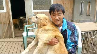 JR小海線に乗って、野辺山(のべやま)駅の近くにある「犬の牧場―八ヶ...