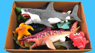 Box Of Toys Sea Animals Learn Sea Animal Names Educational Shark Toy Video For Kids
