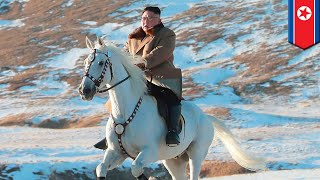 Kim Jong-un forces horse to carry him up sacred mountain - TomoNews