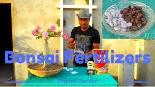 Bonsai Fertilizers ( How to Feed Bonsai ) / Bonsai Hunter