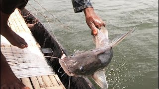 Best Fishing Video Using Hook In River! Really Amazing Fihs Hunting!