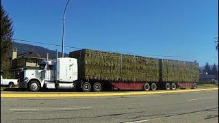 PETERBILT Trucks #01 -- Peterbilt