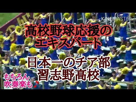 日本一のチア部 習志野高校 応援団