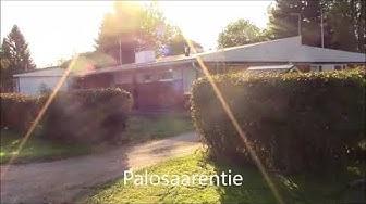 Koliini-video