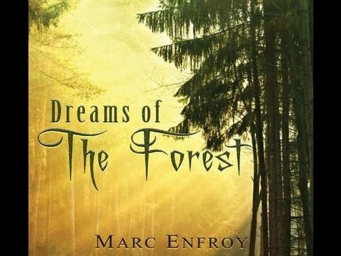 Marc Enfroy - Nocturne CD:Dreams Of The Forest (2012)