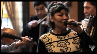 Taraf De Haidouks - Balalau From Bucharest - Acoustic Session by Bruxelles Ma Belle 11