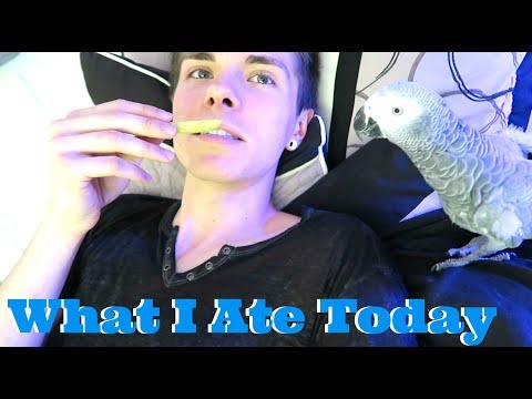 What I Ate Today *Vegan*
