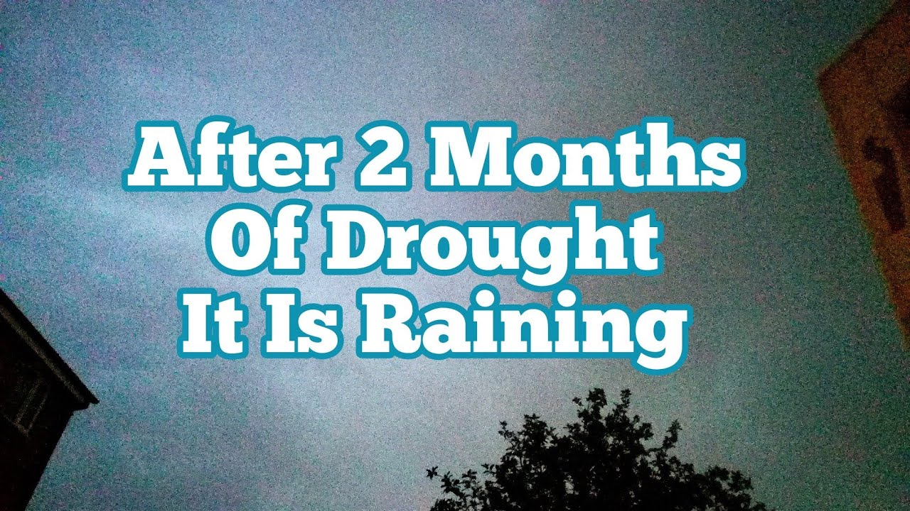 It Is Raining After Two Months Of Drought / Allotment Kitchen Garden ...