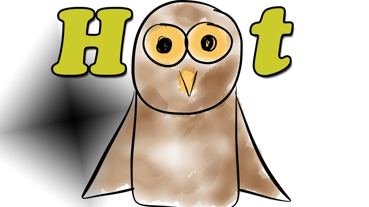 hoot book summary