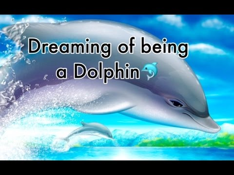 Dreaming of being a Dolphin - Children's Relaxing Bedtime Meditation