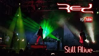RED-Still Alive