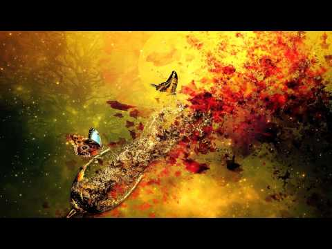 Carbon Based Lifeforms - The Path [Full Album HD]