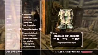 Skyrim: My Level 81 Character (Max Level, Game Completed)