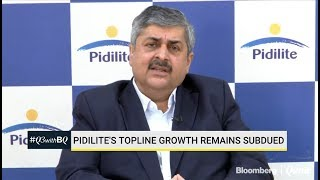 Pidilite's Topline Growth Remains Subdued In Q3