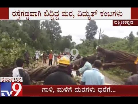 Many Tree Falls and Road Block over Heavy Rain in Hassan and Sakleshpur Districts