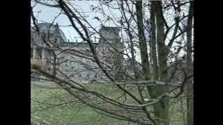 Reichstagsbrand 1933 - die umstrittene Legende von der Alleintäterschaft des Marinus van der Lubbe
