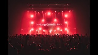 Nothing's Carved In Stone「Bog('19 ver.)」Official Live Video