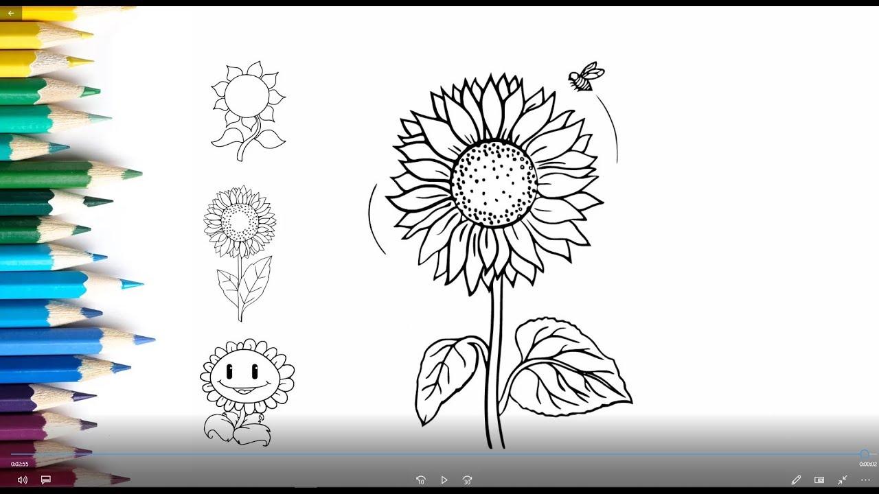"""Hướng dẫn vẽ hoa Hướng Dương bằng bút chì, tham gia """" Tôi Đồng Hành """" """" Vì bệnh nhân Ung Thư """""""