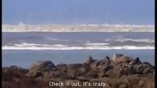 смотреть видео про цунами
