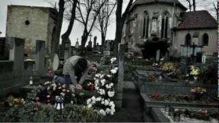 Czech Red Cross: Too Late (Jan 2010)