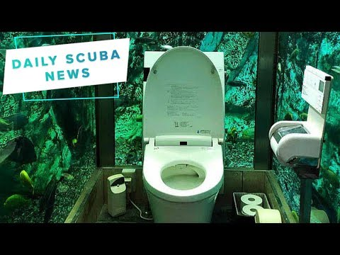 Daily Scuba News - Toilet Fish Bowl