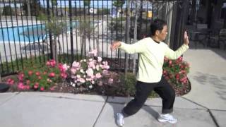 Yang Style Tai Chi in Roseville, California by everydaytaichi by lucy chun