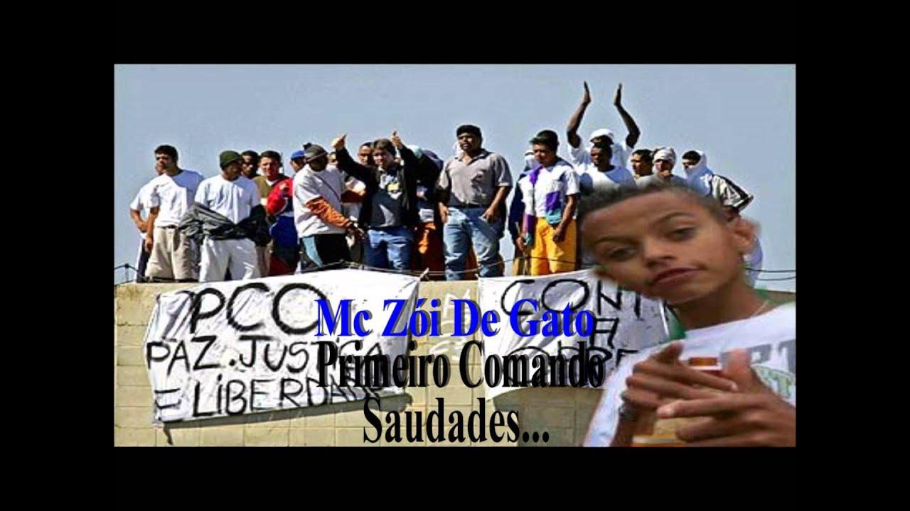 CD DE BAIXAR ZOI FUNK DE GATO MC