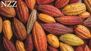 Kakao: Speise der Götter - Dokumentation von NZZ Format (2005)