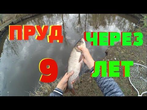 МОЙ ПРУД ЧЕРЕЗ 9 ЛЕТ !!! | ПРУД СПУСТЯ 9 ЛЕТ !!! посылка