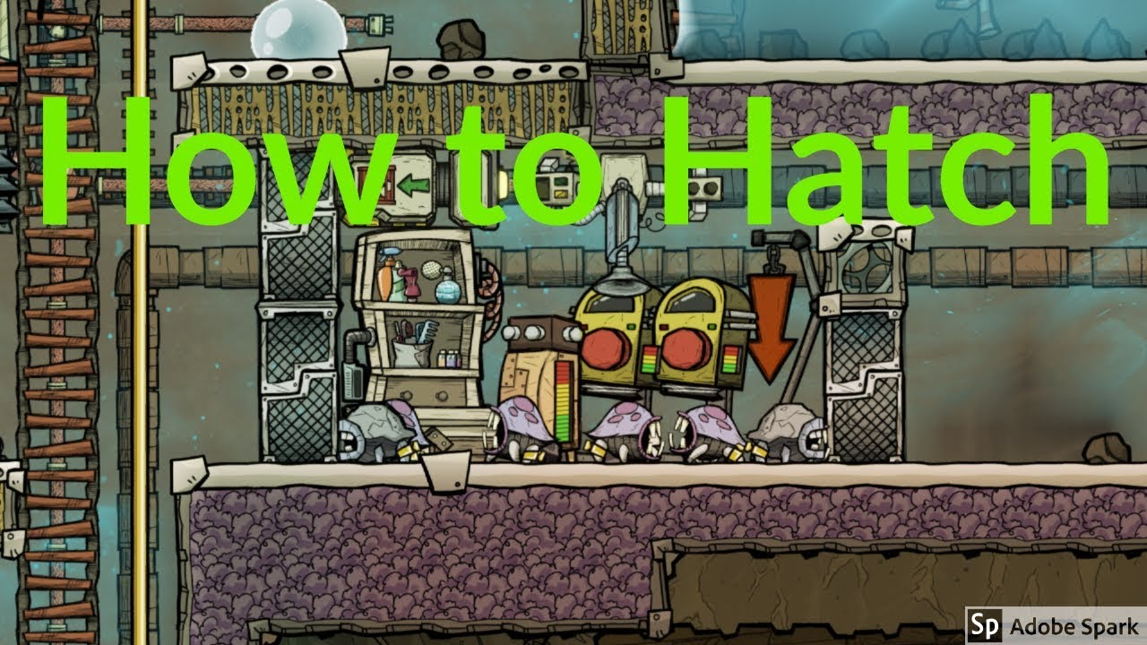 Hatch Ranching Early To Late Game Tutorial Nuggets Oxygen Not Included Youtube