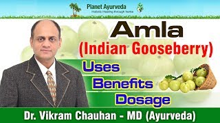 Amla (Indian Gooseberry)- Benefits, Uses, Dosage & Side Effects- Amla Supplements Manufacturer
