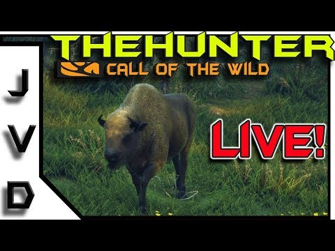 theHunter Call of the Wild Live! | Investigating the Bison | Hirschfelden Missions | COTW