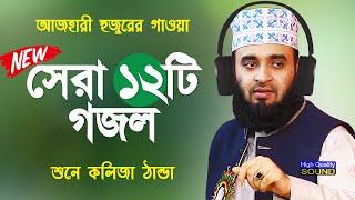 সেরা ১২টি গজল   মিজানুর রহমান আজহারী গজল   Mizanur Rahman Azhari Gojol   Bangla Gojol   Islamic Song