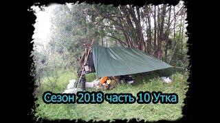 4 месяца в тайге. Сезон 2018 часть 10. Жарим утку, Полярный круг bushcraft.