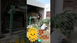 Funny videos for whattthsapp(1)
