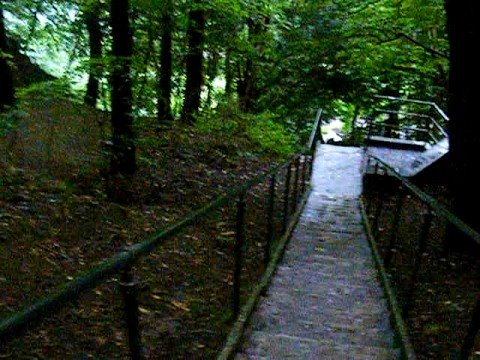 Jacob S Ladder Cheddar Gorge Somerset Youtube
