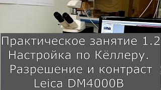 Оптическая микроскопия. Практика 1.2.