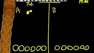 9 3 14反射與運動+運動單位三公