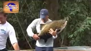 Pesca de Tambaqui em Rondônia com vara de bambú