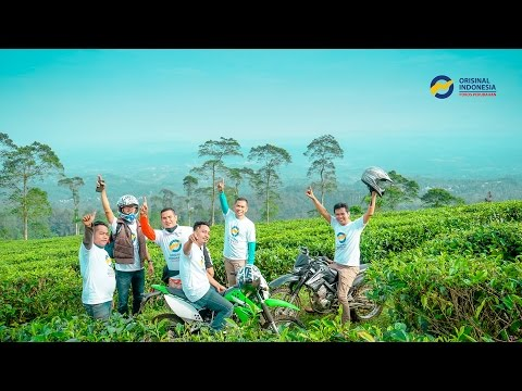 JELAJAH KEBUN TEH PAGILARAN BATANG | Orisinal Indonesia
