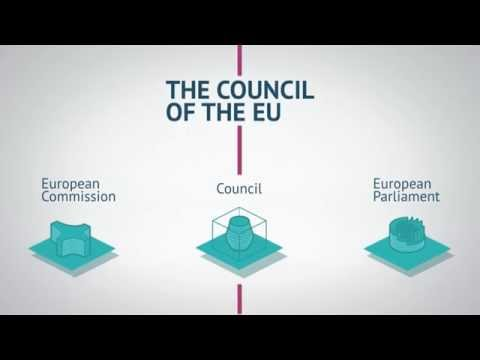 Council animation decision making (EN)