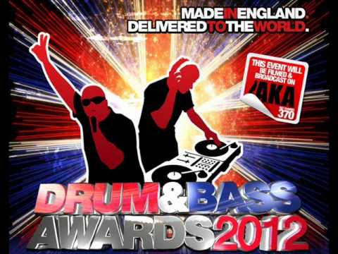 Roni Size & Skibadee - DRUM AND BASS AWARDS 2012