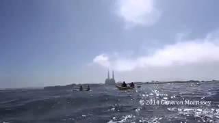 Афигеть, огромный кит, смотреть всем, онлайн