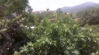 ville de la cigogne, mirabeau, 15004 ( notre ville touristique )
